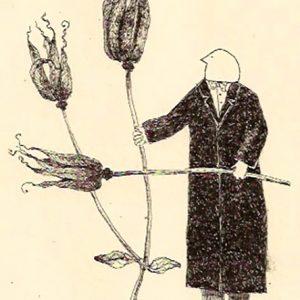 Garden theft aquleghia, Harriet Brigdale, litho